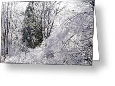 Ice Wonderland Greeting Card