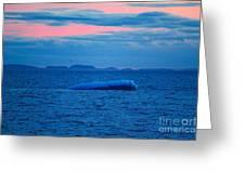 Iceberg Sunset Greeting Card