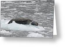 Iced Mother Greeting Card