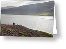 Iceland 12 Greeting Card