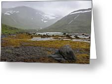 Iceland 36 Greeting Card