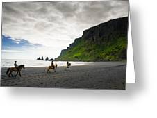 Icelandic Horses On The Beach In Vik Iceland Greeting Card