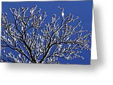 Icey Sparkle Greeting Card