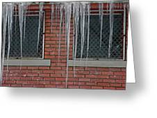Icicles 2 - In Front Of Windows Off Red Brick Bldg. Greeting Card