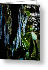 Icicles 3 Greeting Card