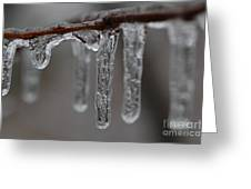 Icicles Close-up Greeting Card