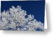 Icy Brilliance Greeting Card