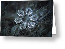 Icy Jewel Greeting Card
