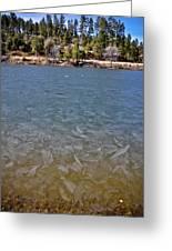 Icy Lake Greeting Card