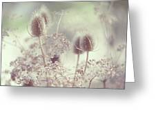 Icy Morning. Wild Grass Greeting Card