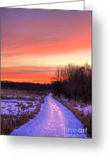 Icy Path Greeting Card
