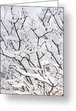 Icy Winter Scene Greeting Card