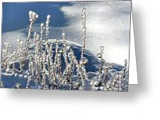 Icy World Greeting Card