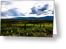 Idaho Field Greeting Card