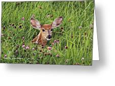 Id'st Hiding In The Flowers Greeting Card