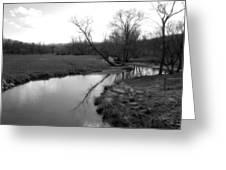 Idyllic Creek - Black And White Greeting Card