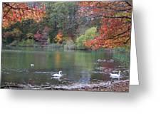 An Idyllic Autumn Greeting Card