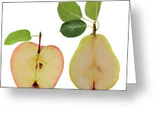 Illustration Of Apple And Pear Greeting Card