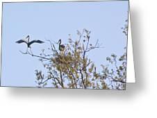 I'm The Man Err Bird II Greeting Card