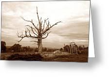Fantastic Tree Greeting Card