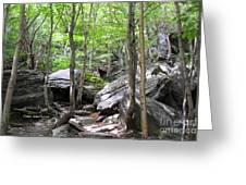 Image Included In Queen The Novel - Rocks At Smugglers Notch Greeting Card