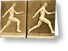 Image Sequence From Animal Locomotion Series Greeting Card