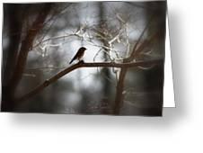 Img_2287 - Eastern Bluebird Greeting Card