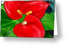 Immeasurable Beauty- Anthurium Paintings Greeting Card