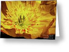 Imparting Light  Greeting Card