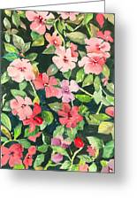 Impatiens Greeting Card