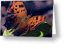 Imperfect Satyr Comma Greeting Card