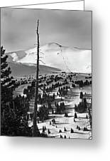 Imperial Bowl And Peak 8 At Breckenridge Resort Colorado Greeting Card by Brendan Reals