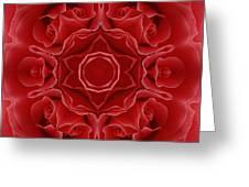 Imperial Red Rose Mandala Greeting Card