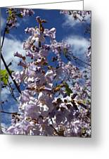 Imperial Tree Flowers Greeting Card