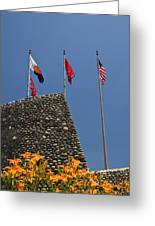 Imposing Flags Greeting Card