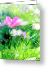Impressionistic Photography At Meggido 3 Greeting Card