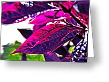 Impressionistic Purple Leaves Greeting Card