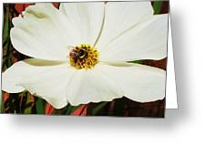 In A Bee's Life Greeting Card