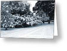 In A Winter Park Greeting Card