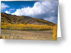 In Autumn Light Greeting Card