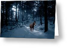 In Blue Wood Greeting Card