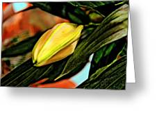 In Bud. Greeting Card