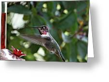 In Flight Meal Greeting Card