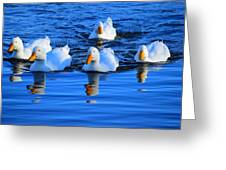 In Formation Greeting Card