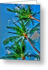 In Palms View Greeting Card