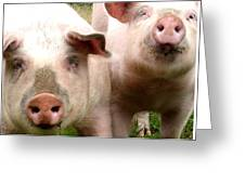 In Pig Times And Bad Times We Will Always Be Together  Greeting Card