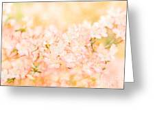 In The Arms Of Spring Greeting Card