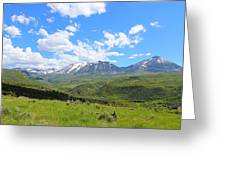 In The Back Country 2 Greeting Card