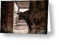 In The Barn Greeting Card