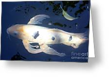 In The Blue World Greeting Card